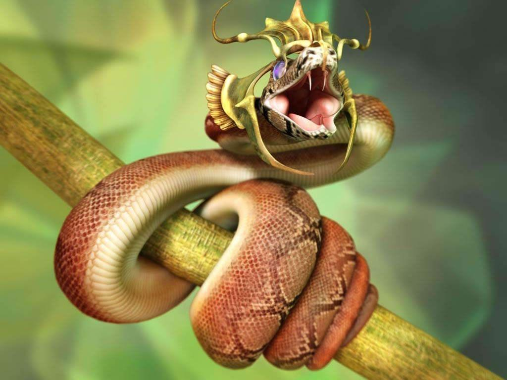 King Cobra Of Snake Wallpaper HD #7553 Wallpaper | High Resolution …
