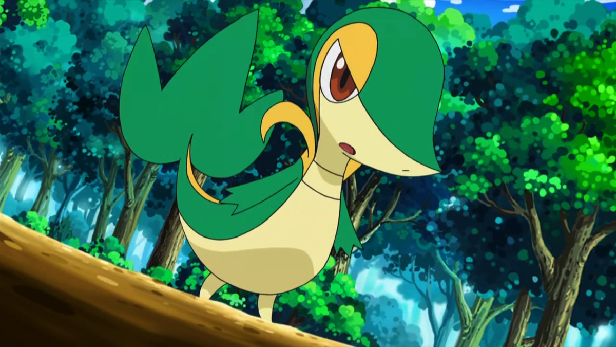 Snivy images Snivy HD wallpaper and background photos (25486021)