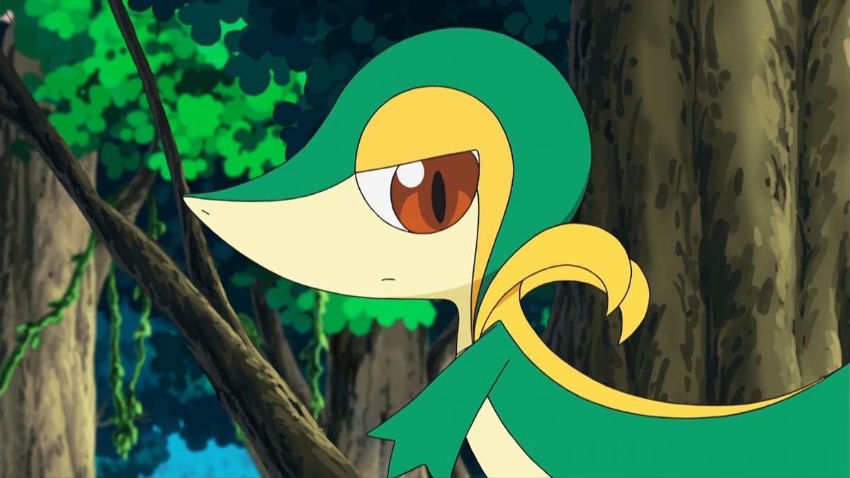 BW007: Snivy Plays Hard to Catch! | Pokémon Wiki | FANDOM powered by …