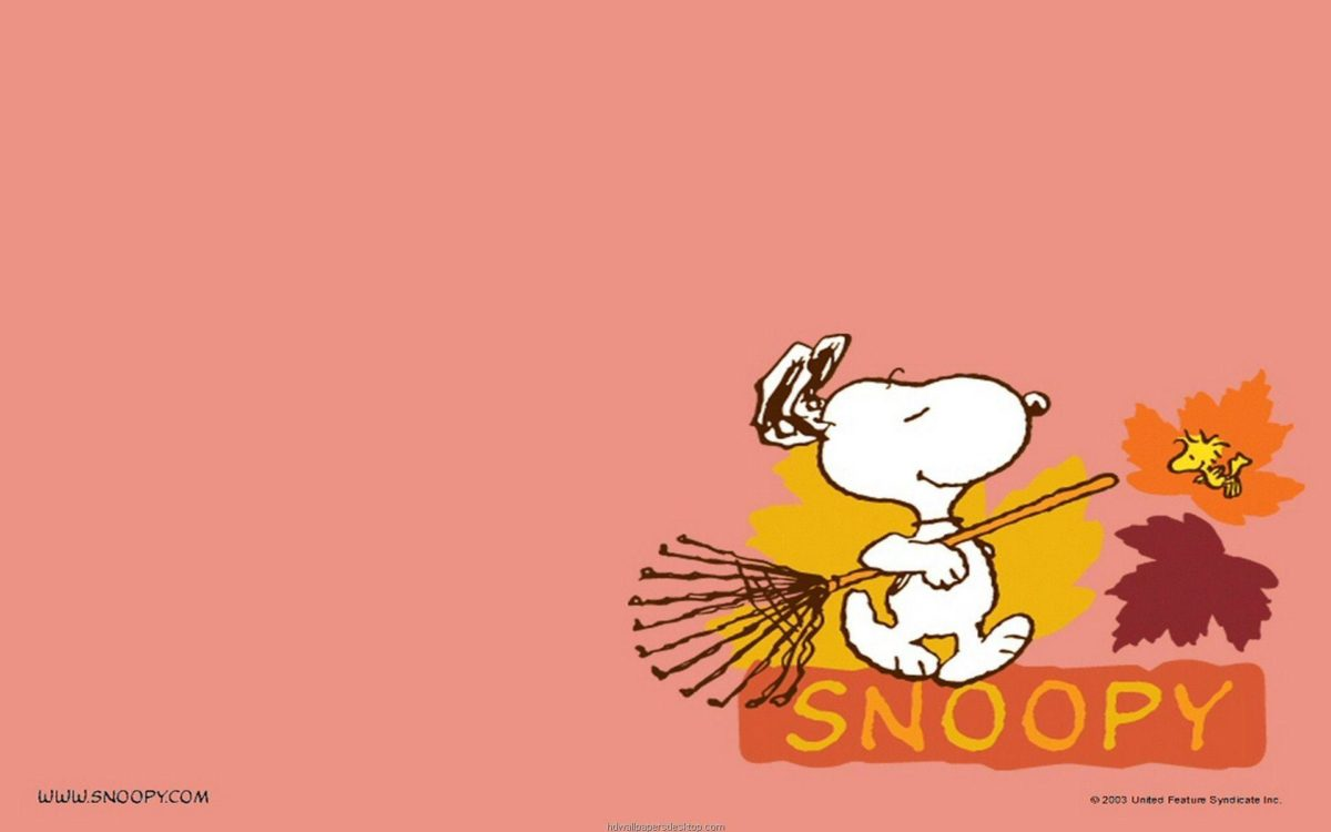 Most Downloaded Snoopy Wallpapers – Full HD wallpaper search