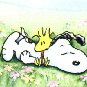 download Snoopy wallpaper – Snoopy Wallpaper (33124728) – Fanpop