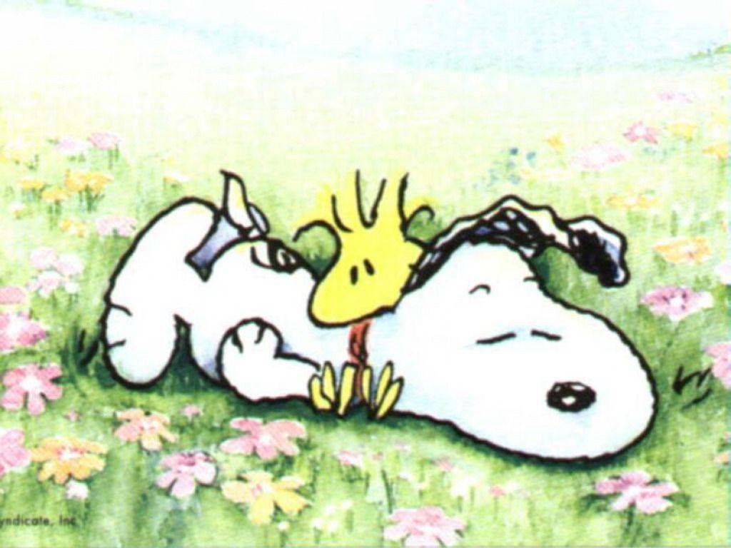 Snoopy wallpaper – Snoopy Wallpaper (33124728) – Fanpop