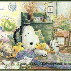 download SNOOPY – Peanuts Wallpaper (28234401) – Fanpop