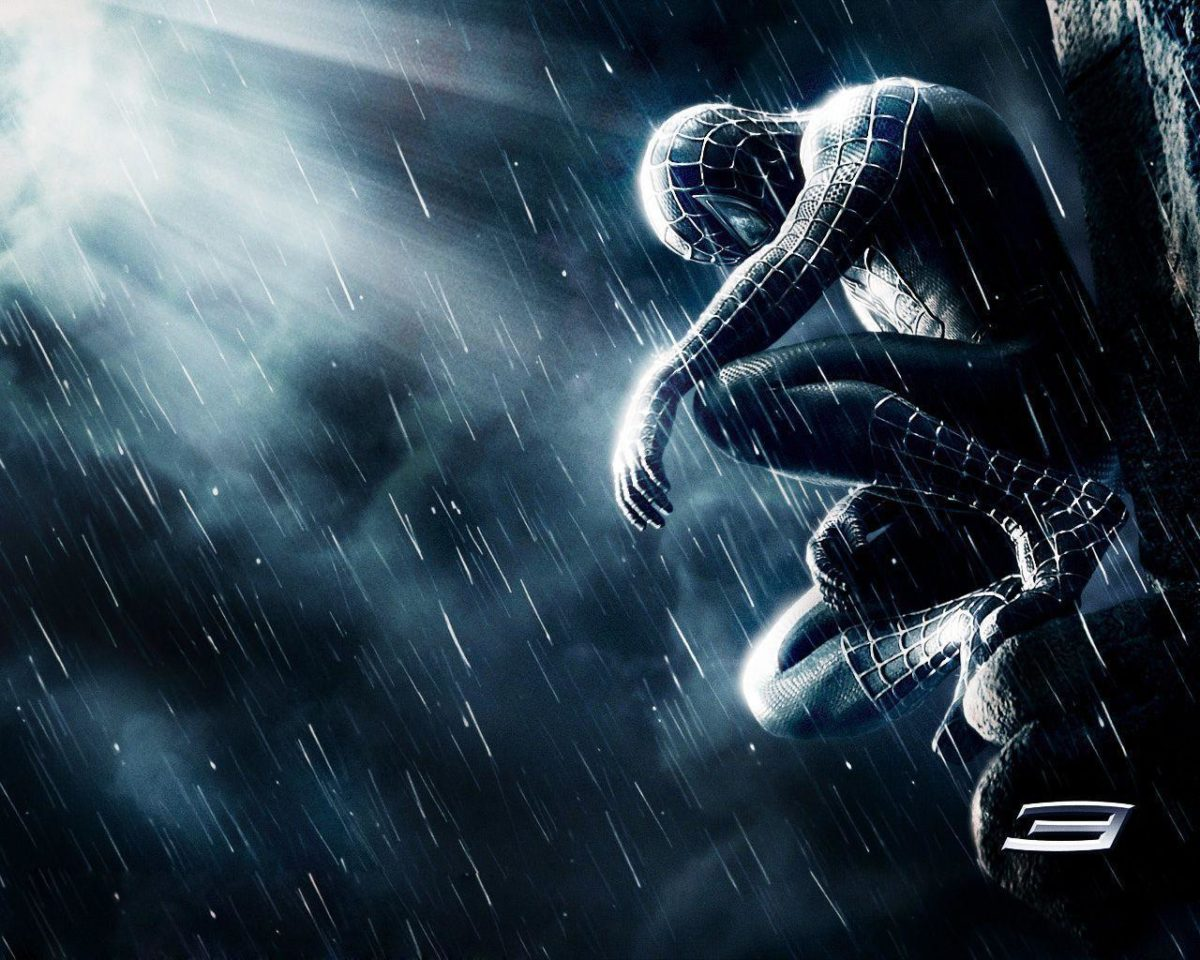 Wallpapers For > Spider Man 3d Wallpaper Hd