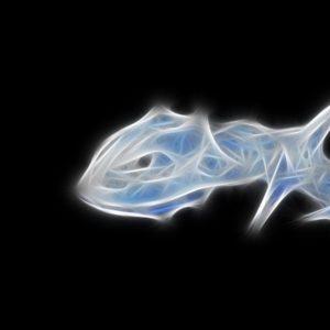 download Pokemon Fractalius simple background Steelix black background …