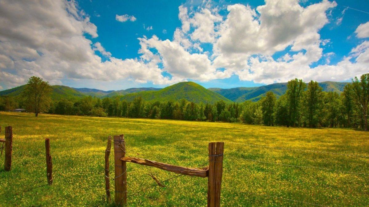 Nature HD Image Wallpaper field grass fence sky summer 84356 …