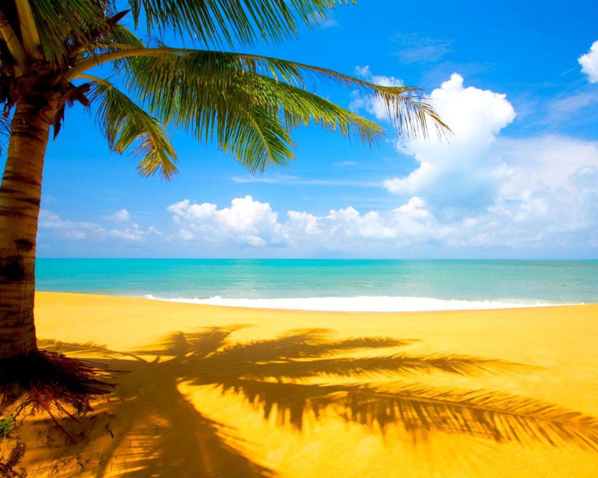 Summer Season Widescreen wallpaper | beach | Wallpaper Better