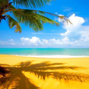 download Summer Season Widescreen wallpaper | beach | Wallpaper Better