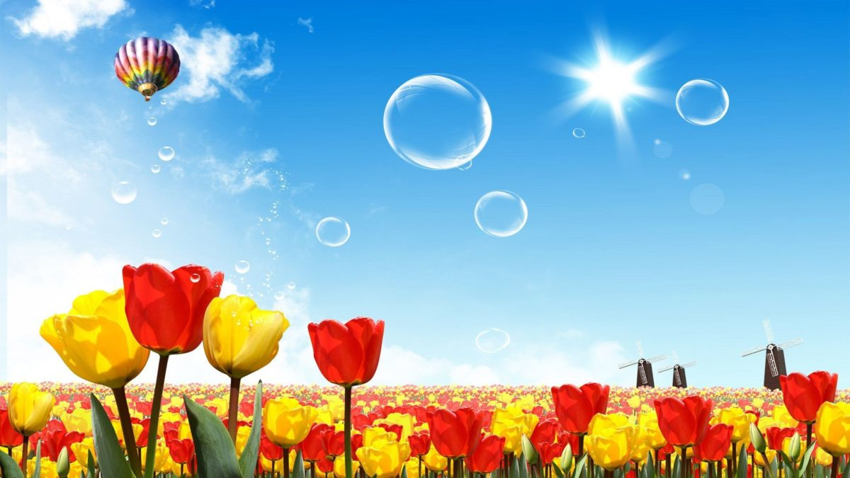 amazing-red-yellow-summer-seasons | SEASON in LOVE | Pinterest …
