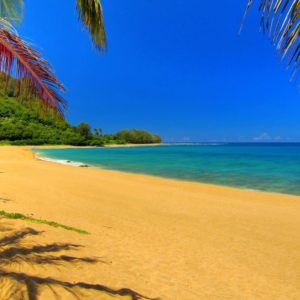 download Summer Wallpaper For Computer Hd Background 8 HD Wallpapers | Hdimges.