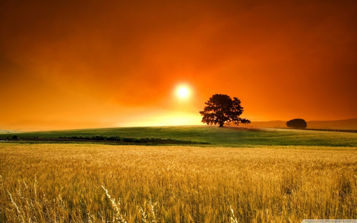 Summer Sunset Wallpapers Hd Background 8 HD Wallpapers | Hdimges.