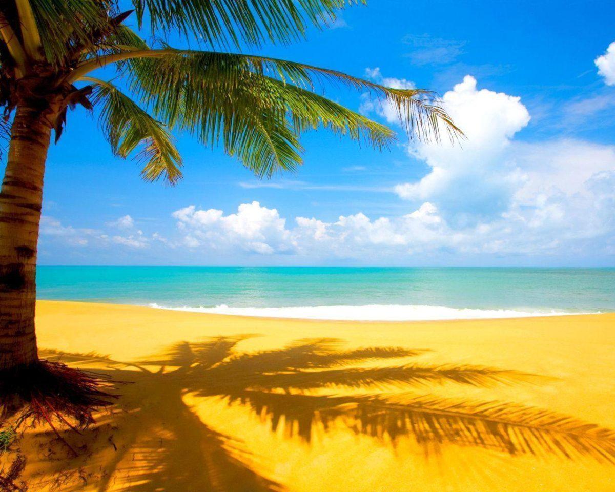 Beach Summer Wallpaper Hd Cool 7 HD Wallpapers | aladdino.