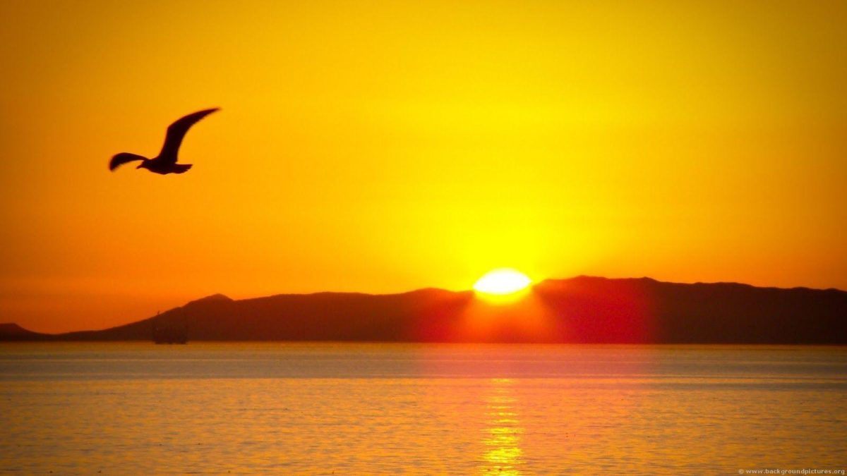 A Place For Free HD Wallpapers   Desktop Wallpapers: Sun Rise …
