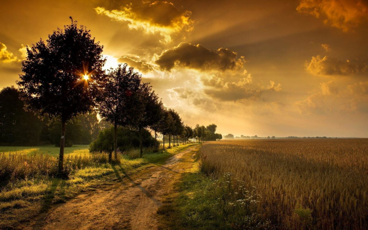 Amazing Sunrise Wallpaper 7724 1920×1200 px ~ FreeWallSource.