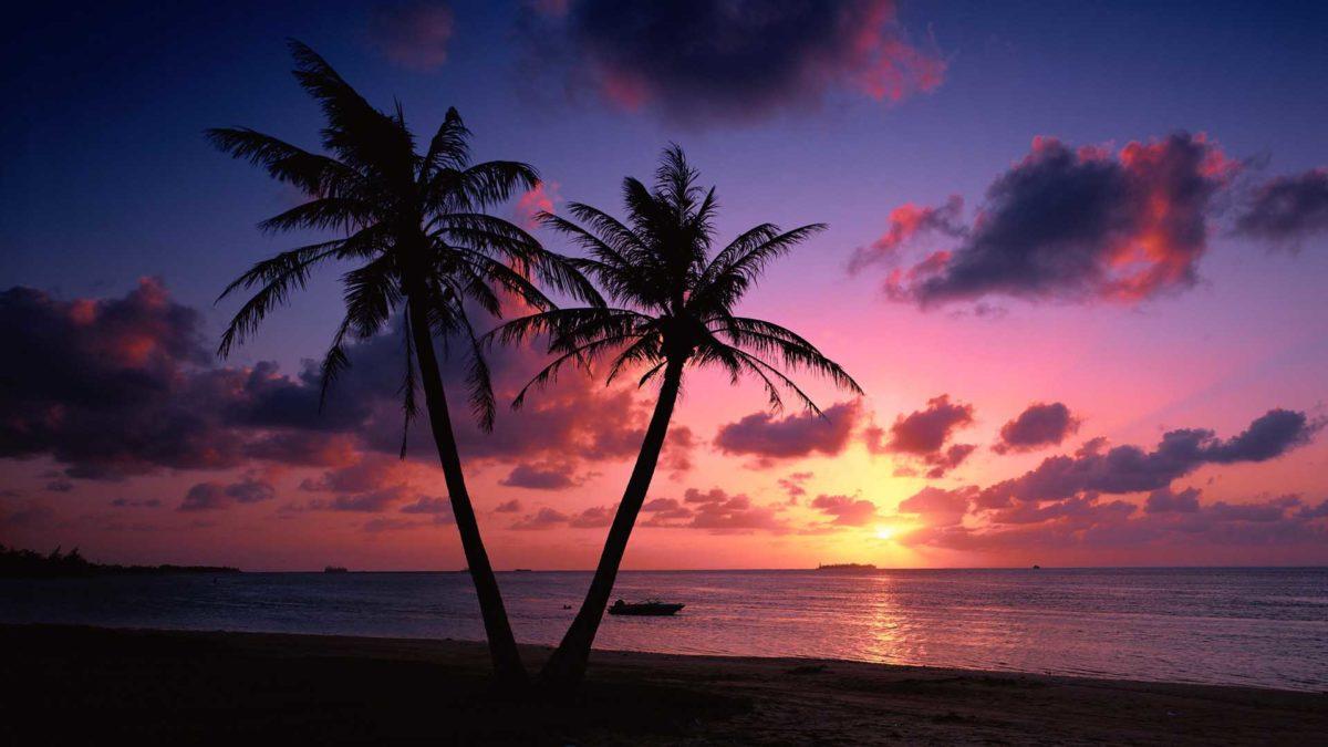 Pink Beach Sunset Wallpaper Hd Background 9 HD Wallpapers