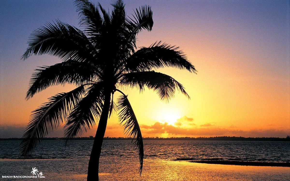 Beach Sunset Backgrounds 33170 Hd Wallpapers in Beach n Tropical …