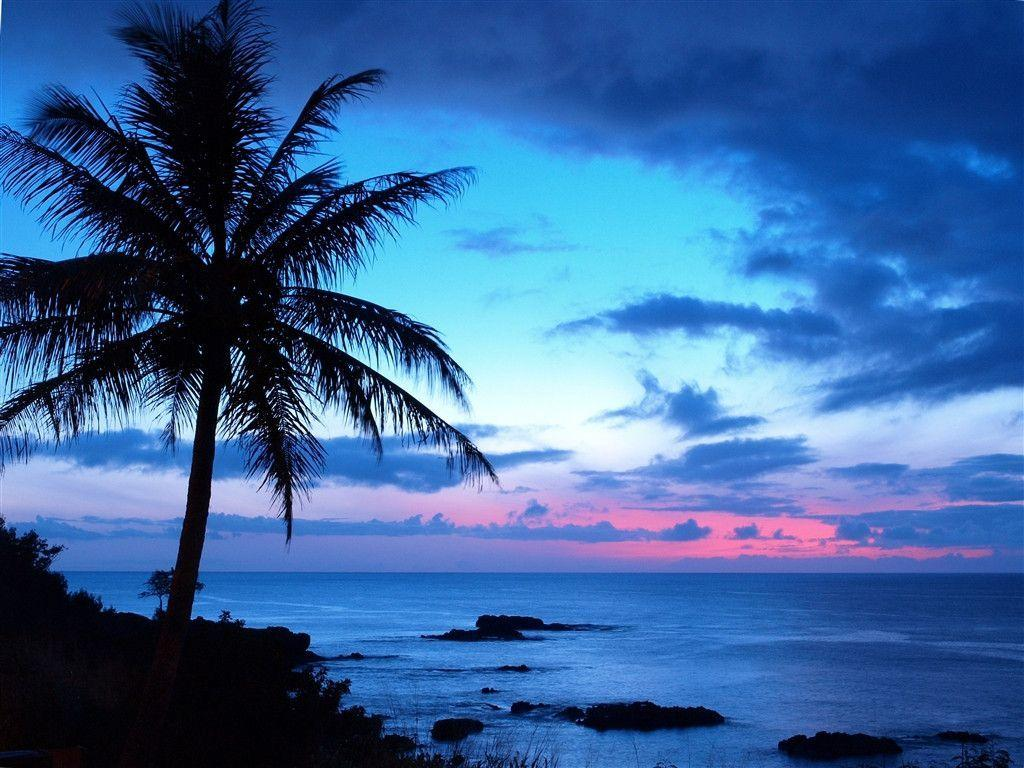 Tropical Sunset Backgrounds 10744 Hd Wallpapers in Beach n …