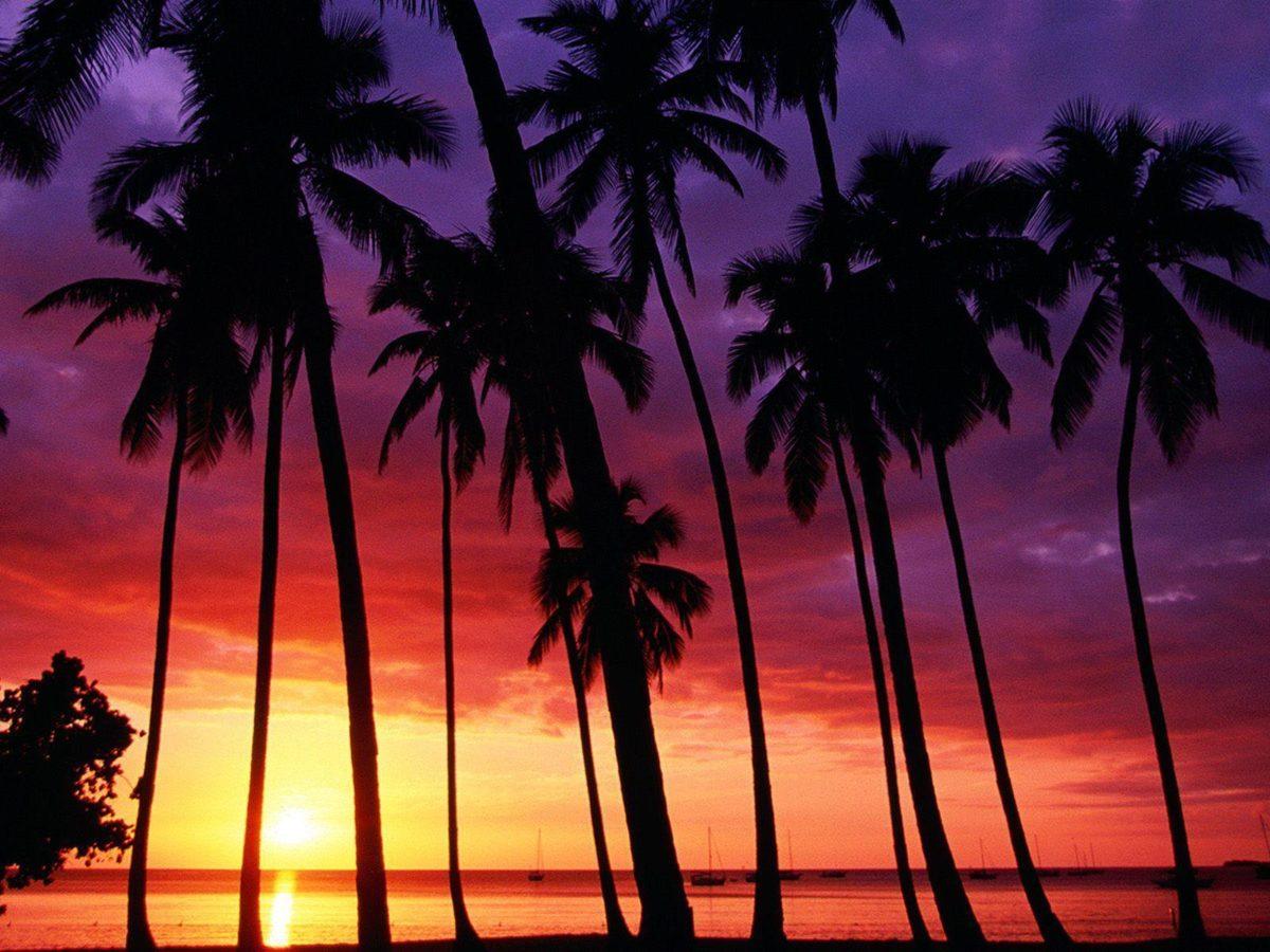 sunset beach wallpaper desktop background Desktop Backgrounds Free