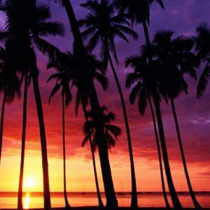 download sunset beach wallpaper desktop background Desktop Backgrounds Free