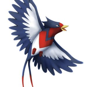 download Swellow Photos | Full HD Pictures