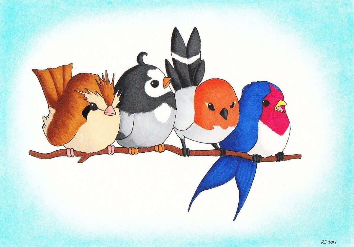 Pokemon, Birds, Original, Pidgey, Starly, Fletchling, Taillow, Bird …