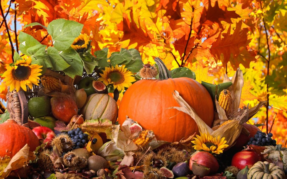 38 Thanksgiving Wallpapers | Thanksgiving Backgrounds
