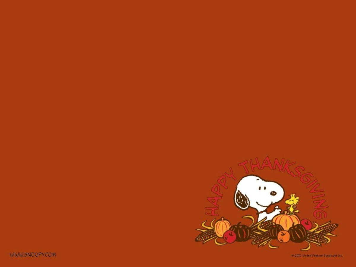 Thanksgiving Images HD Wallpaper – Beraplan.