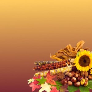 download Free Thanksgiving Wallpaper Backgrounds