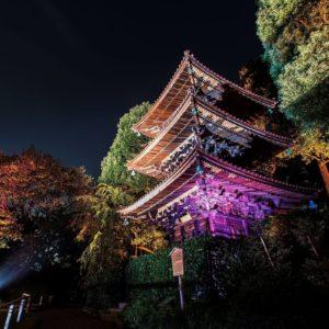 download Chinzan-so Garden, Tokyo wallpaper – World wallpapers – #