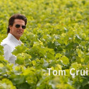 download Tom Cruise Wallpaper #20