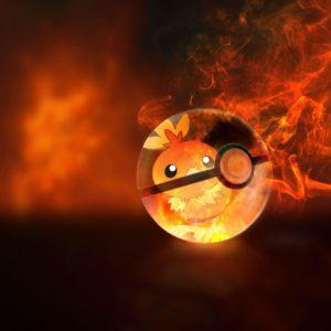 download Torchic wallpaper : pokemon