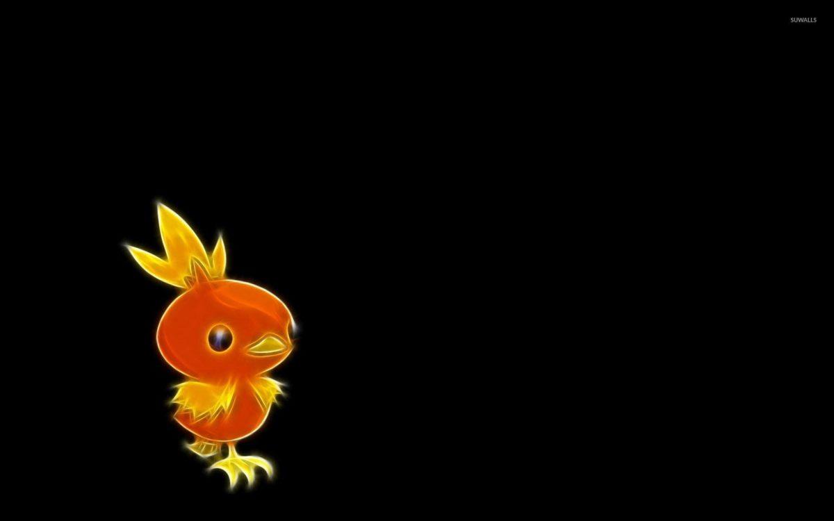 Torchic – Pokemon wallpaper – Game wallpapers – #35612