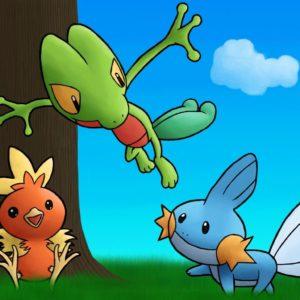 download pokemon mudkip treecko torchic 1280×1024 wallpaper High Quality …
