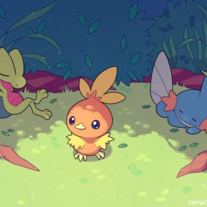 download Torchic, Pokémon, Treecko, Mudkip HD Wallpapers / Desktop and Mobile …