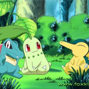 download Totodile Wallpapers Group (77)
