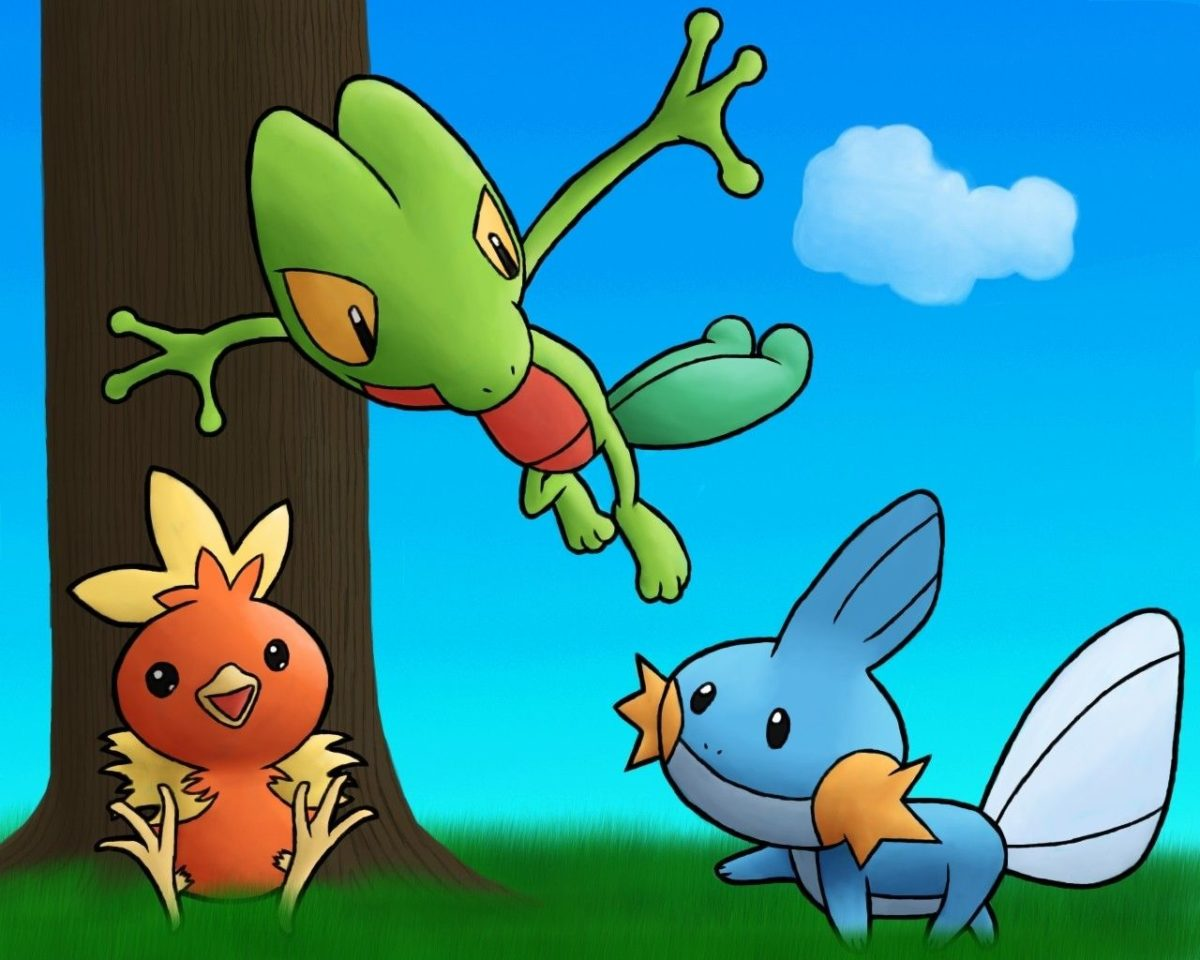 pokemon mudkip treecko torchic 1280×1024 wallpaper High Quality …