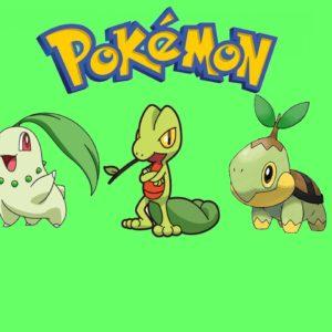 download pokemon bulbasaur treecko snivy chikorita turtwig #982359