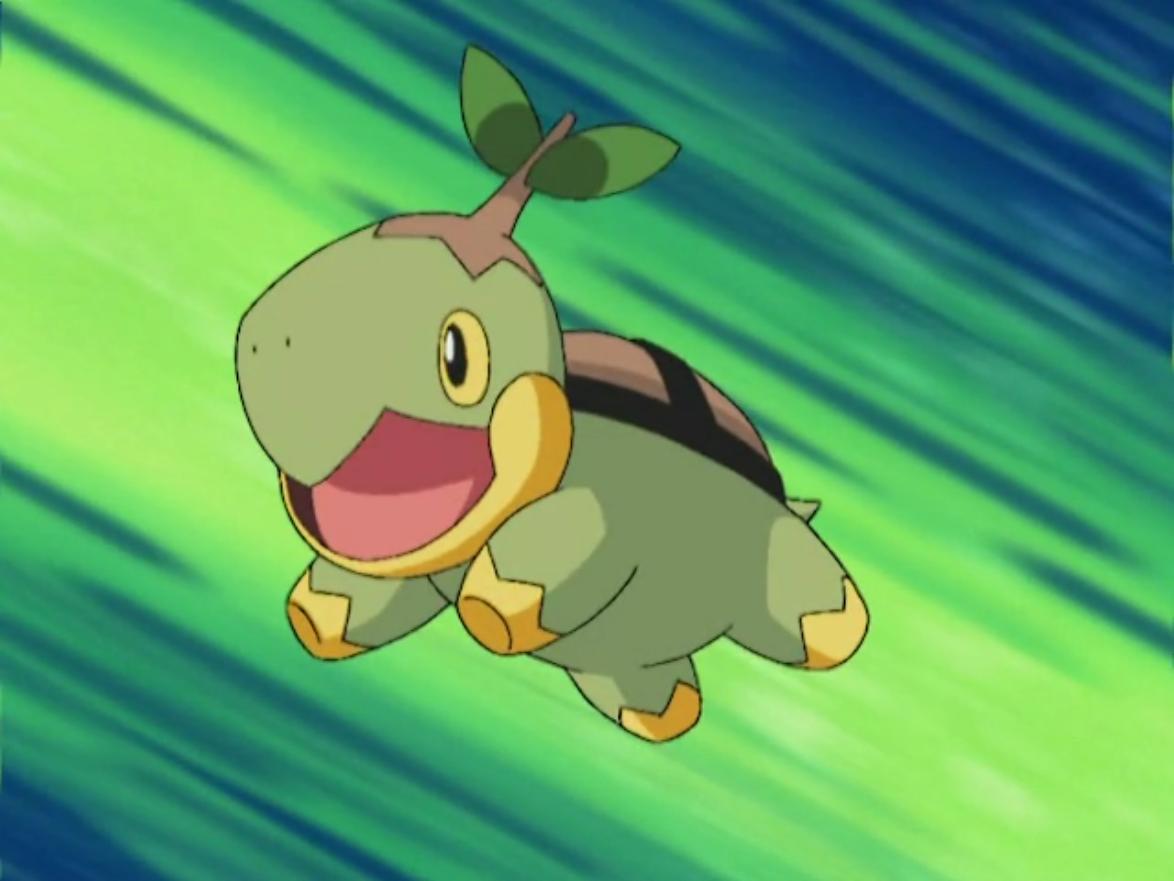Image – Ash Turtwig.png | Pokémon Wiki | FANDOM powered by Wikia