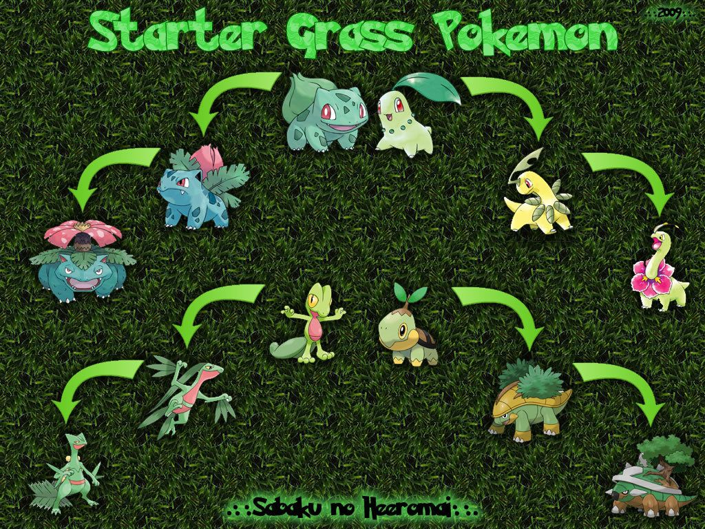 pokemon chikorita turtwig grass bulbasaur