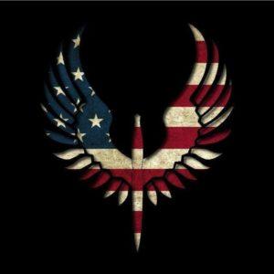 download Astonishing Eagle Flag USA Wallpaper HD 1680p Wallpaper 2013 …