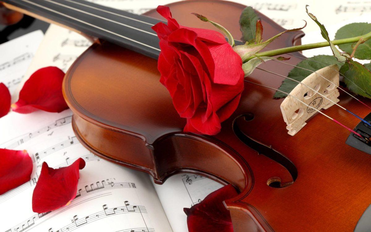Violin Instrument Music Wallpaper HD #6429 Wallpaper | Wallpaper …