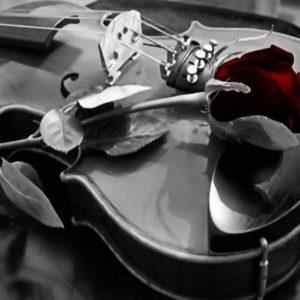 download violin_wallpaper_smwjk2.jpg