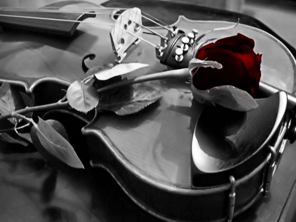 violin_wallpaper_smwjk2.jpg