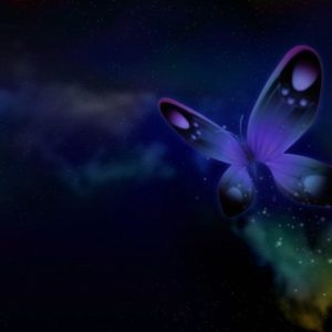 download FunMozar – Most Beautiful Butterfly Wallpapers