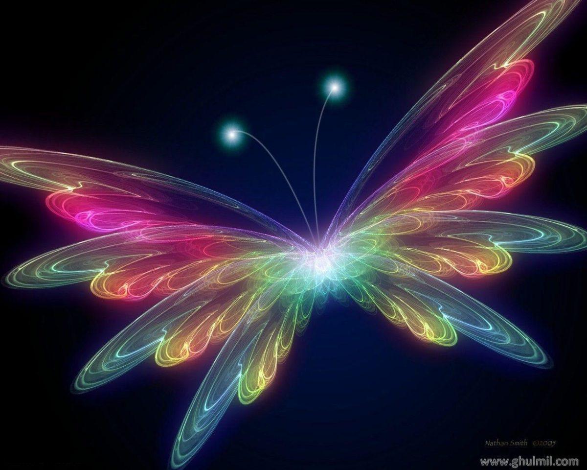 3D Butterfly wallpaper – Butterflies Wallpaper (31063788) – Fanpop