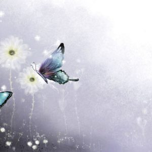 download Butterflies-HD-Wallpapers-5 – AHD Images