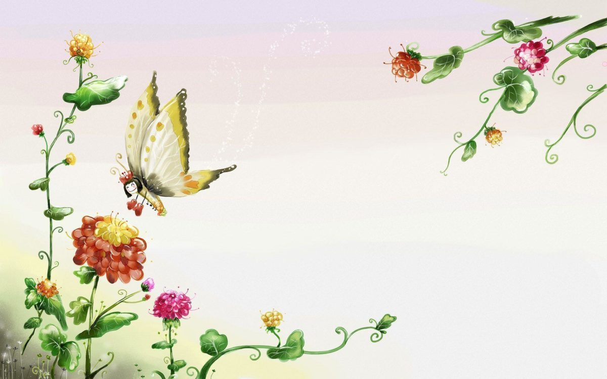 Butterfly Wallpaper 118 234287 High Definition Wallpapers| wallalay.