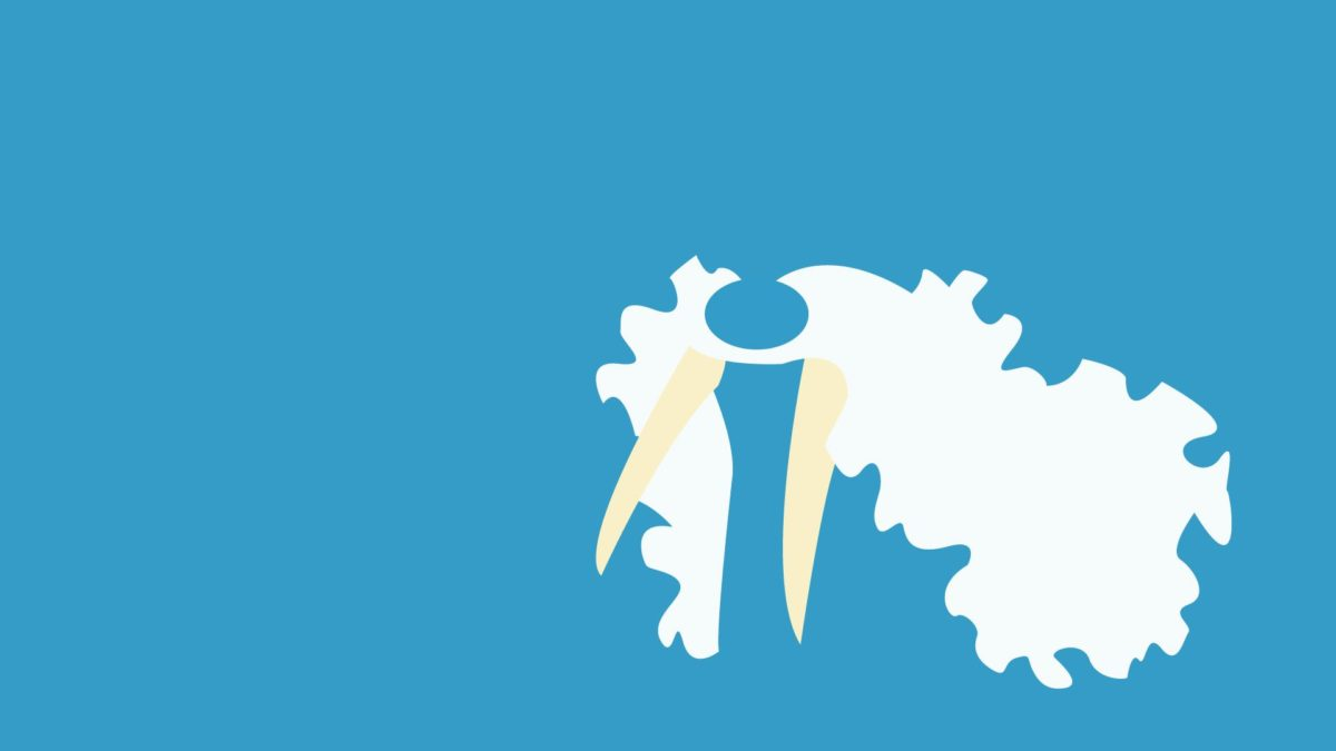 2 Walrein (Pokémon) HD Wallpapers | Background Images – Wallpaper Abyss