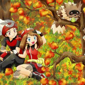 download RS and Zigzagoon | Pokémon | Pinterest | Pokémon, Pokemon special …